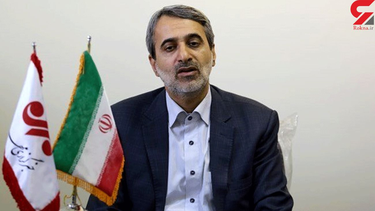 Europeans hate Iranians defense power: MP