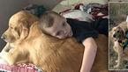 این سگ پیشگو مراقب پسر 12 ساله بیمار است +عکس