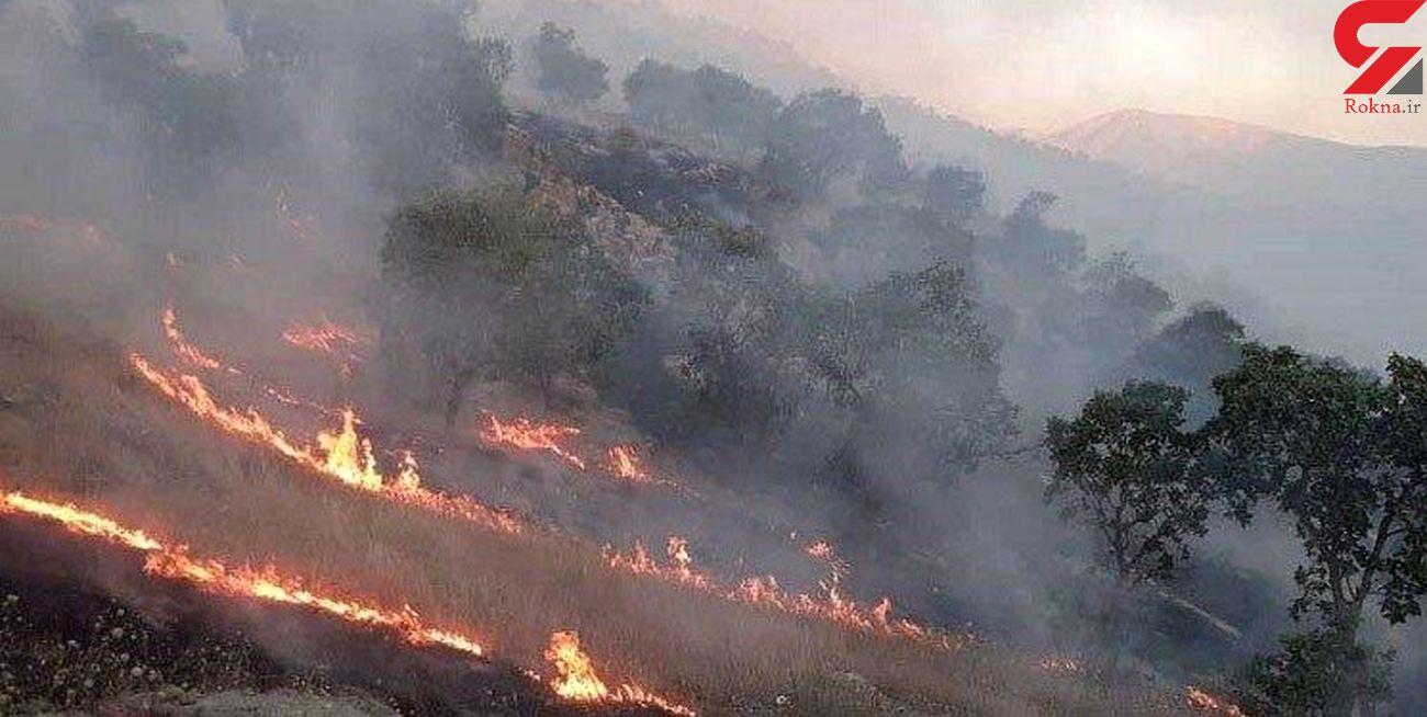 آتش به جان ارتفاعات عسلویه افتاد