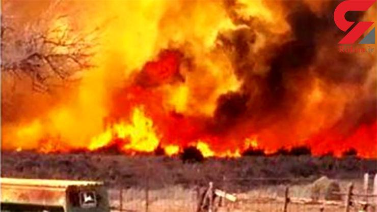 آتش گسترده در جنگل های اوکلاهما
