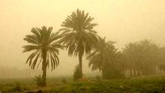 طوفان خاک ۵ دانش آموز خوزستانی را راهی بیمارستان کرد