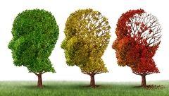 آلزایمری ها با چه مشکلاتی دست و پنجه نرم می کنند؟