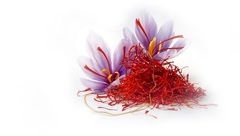 هزار و یک خاصیت درمانی زعفران/ چای شادی و خوشحالی بنوشید!