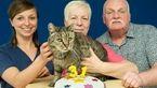 پیرترین گربه ی دنیا 31 ساله شد + عکس جشن تولد
