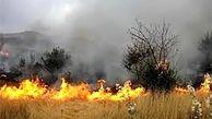 سوختن ادامه دار جنگلهای گچساران / رایزنی با وزارت دفاع کشور