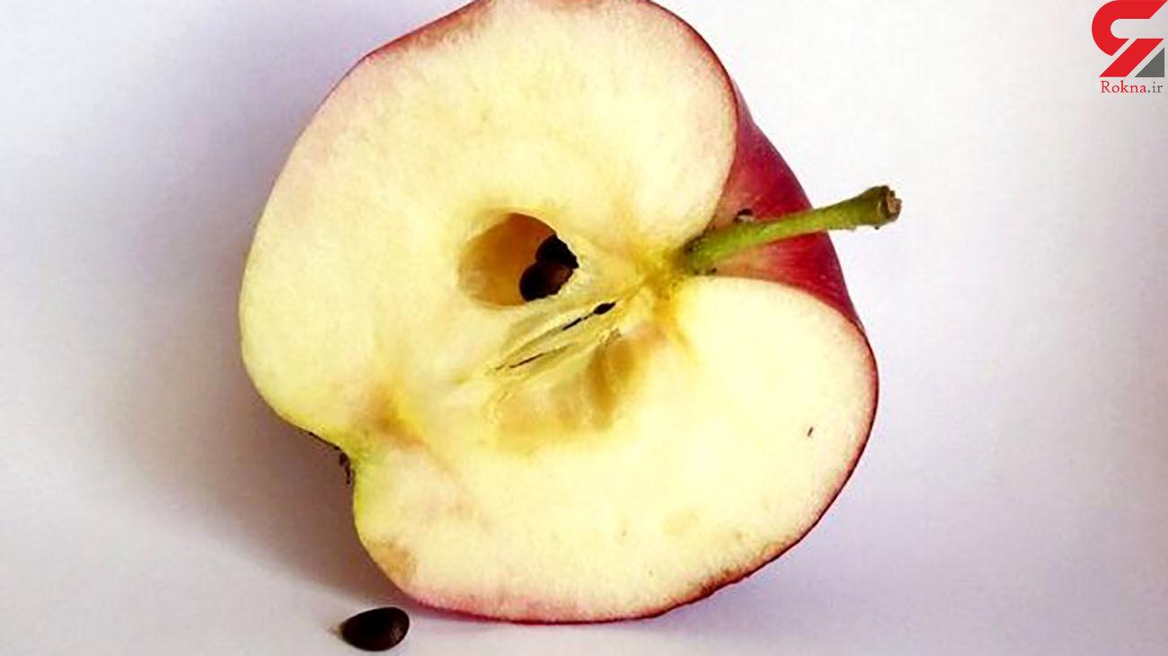 دانه سیب ، خوردنی سمی!