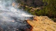 منطقه کَپُک ایذه در آتش سوخت