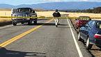 5 کشته 10 زخمی در تیراندازی شمال کالیفرنیا