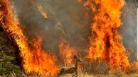 هلی کوپتر های هلال احمر تنها امداد هوایی در جنگ با آتش زاگرس / جنگل های پنج استان در حال سوختن + فیلم