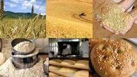 البرز ماهانه نیاز به 17 هزار تن آرد گندم دارد