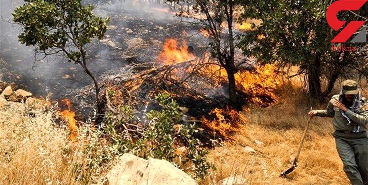 مهار آتش سوزی در کوه های سپیدان