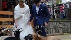 مراسم عروسی در باغ وحش مسکو