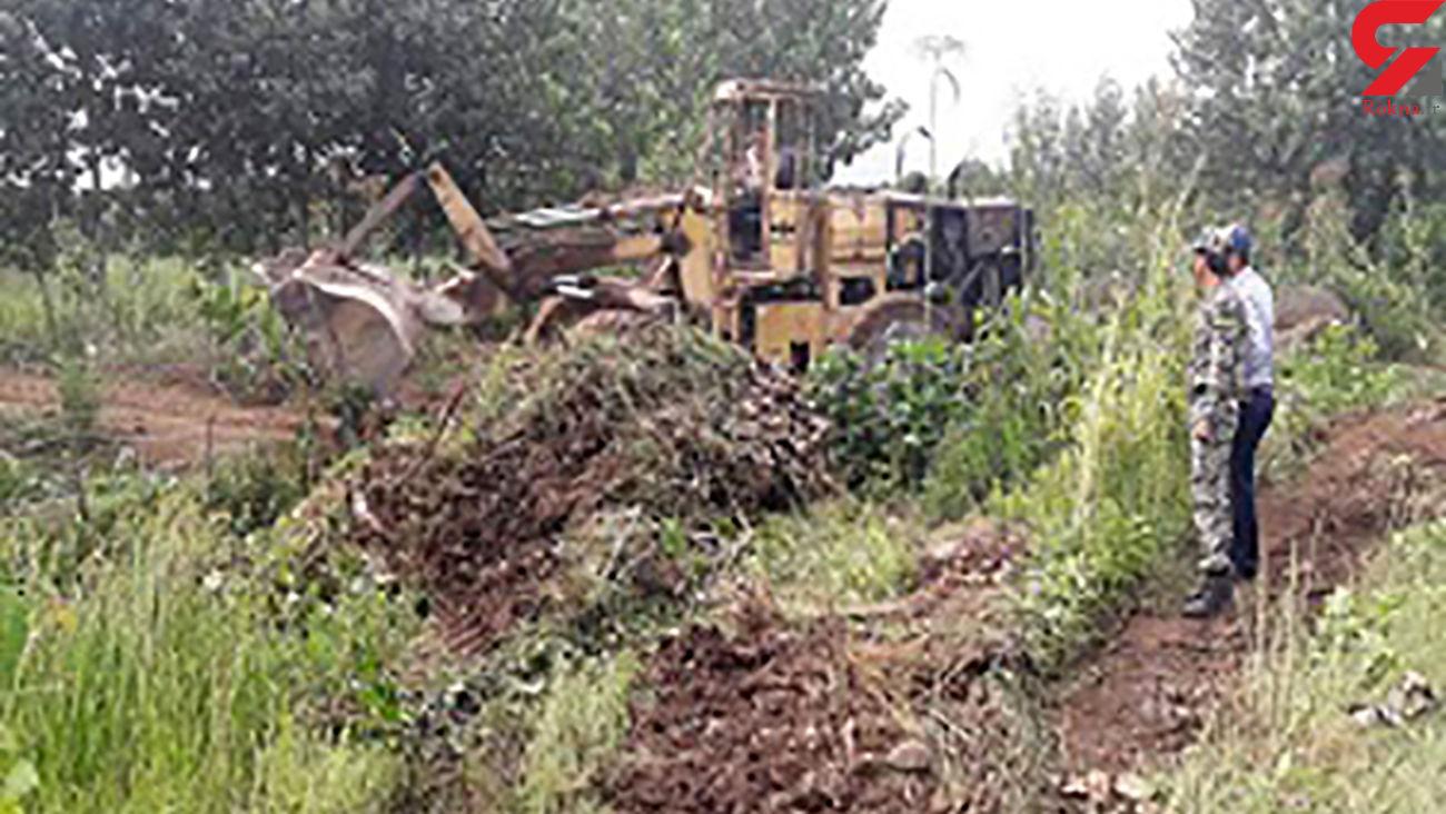 دستگیری 10 قاتل منابع طبیعی در مریوان