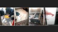 عاشقی وحشتناک علی چاقه شرور معروف به دختر 17 ساله / او با خنجر وارد خانه دختر شد + عکس