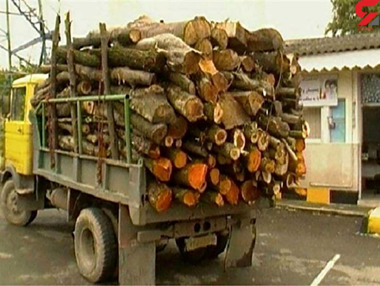 کشف 15 تن چوب قاچاق در آستانهاشرفیه