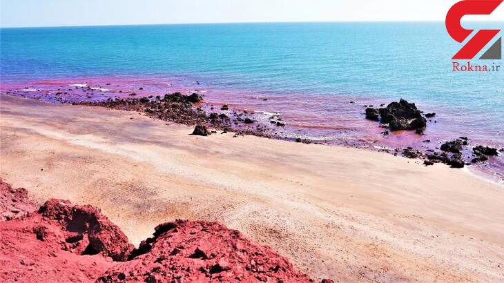 ساحل در خلیج فارس به رنگ خون درآمد+عکس