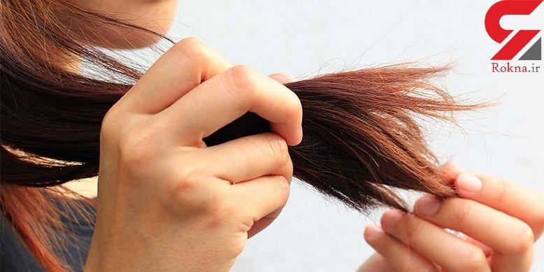 14 اشتباه که زیبایی موهای تان را از بین می برد/چرا موخوره می زنید؟