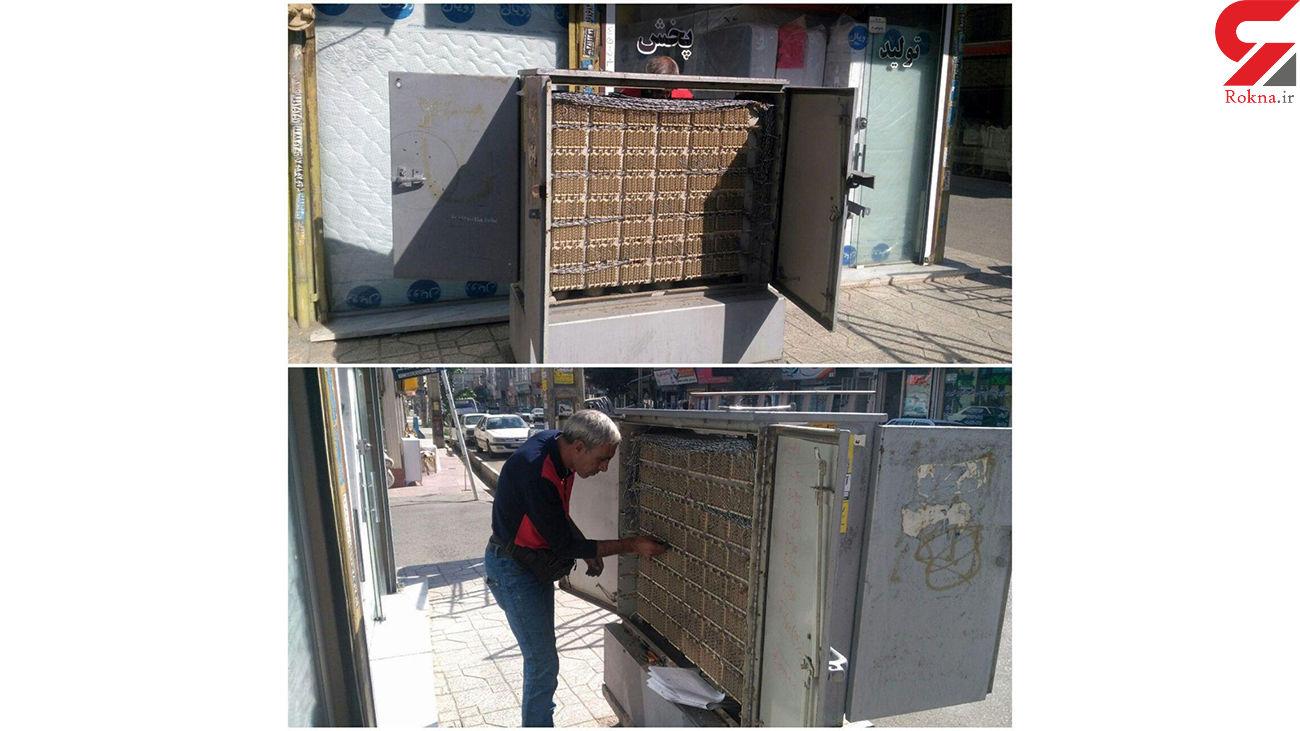 قطع کردن تلفن هزار گلستانی در یک شب /  سارقان دستگیر شدند