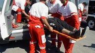 ردپای خونین 3 گرگ در صحنه مرگ فجیع مرد طبسی+ عکس