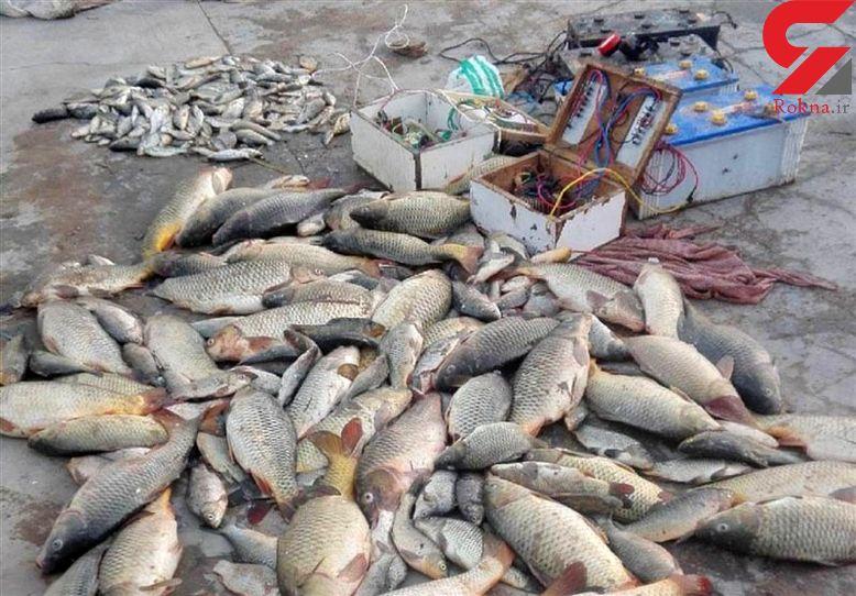 صیادان غیرمجاز ماهی در پارک ملی کرخه شهرستان شوش دستگیر شدند