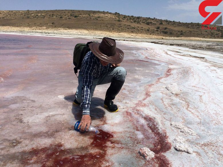 موجود عجیب در دریاچه ارومیه! / ماجرای انتشار یک فیلم
