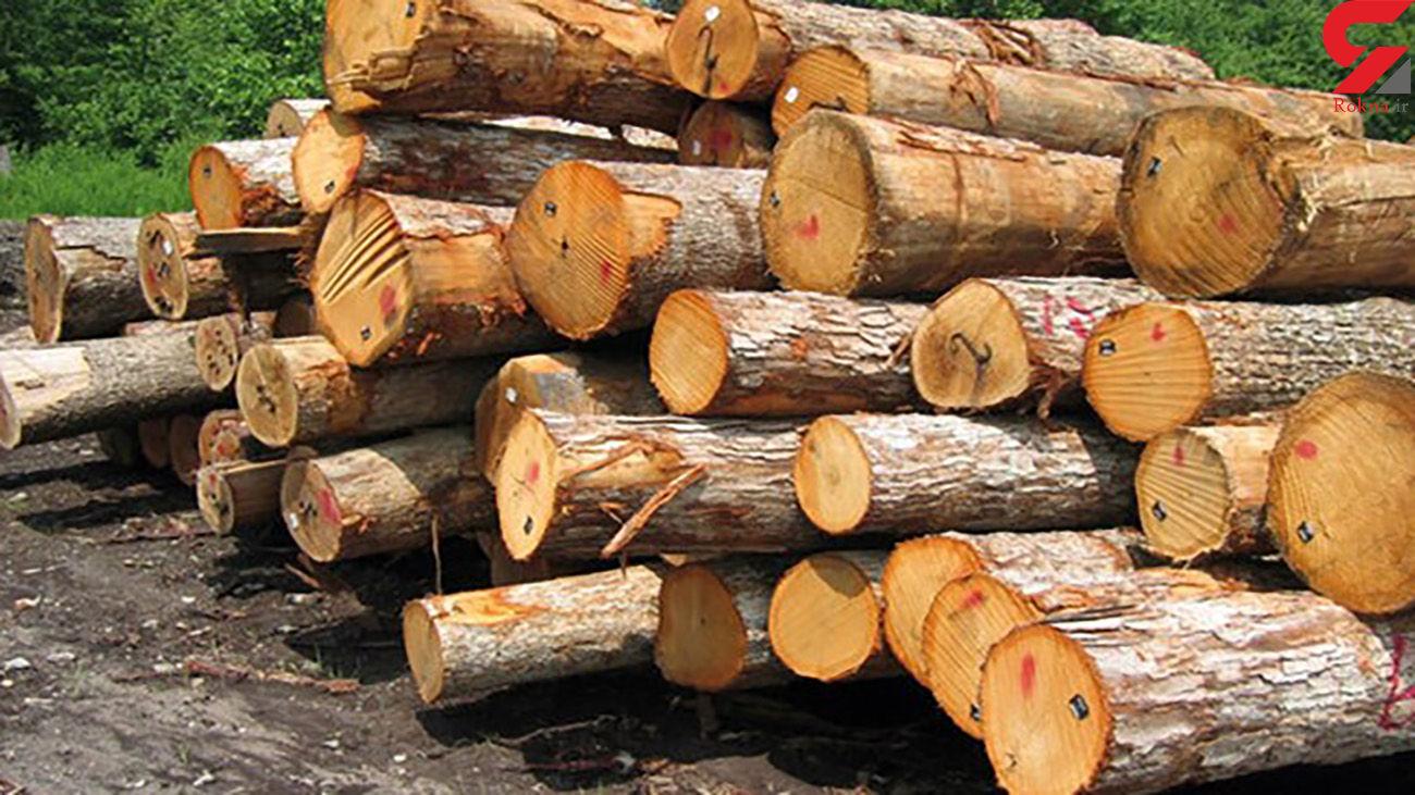 کشف یک تن چوب جنگلی قاچاق در لردگان