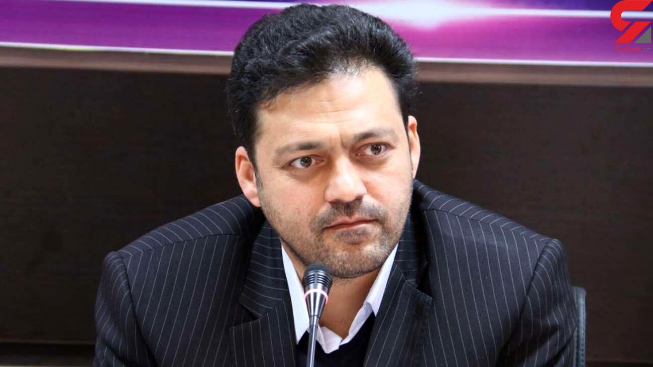 انتقاد از شهرداری تهران برای نگهداری سگ های بدون صاحب آرادکوه