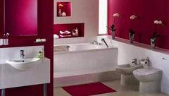 ویروس کشی در حمام با ساده ترین ترفندها