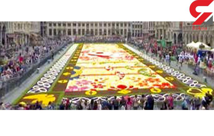 ساخت فرشی با 600 هزار گل+عکس