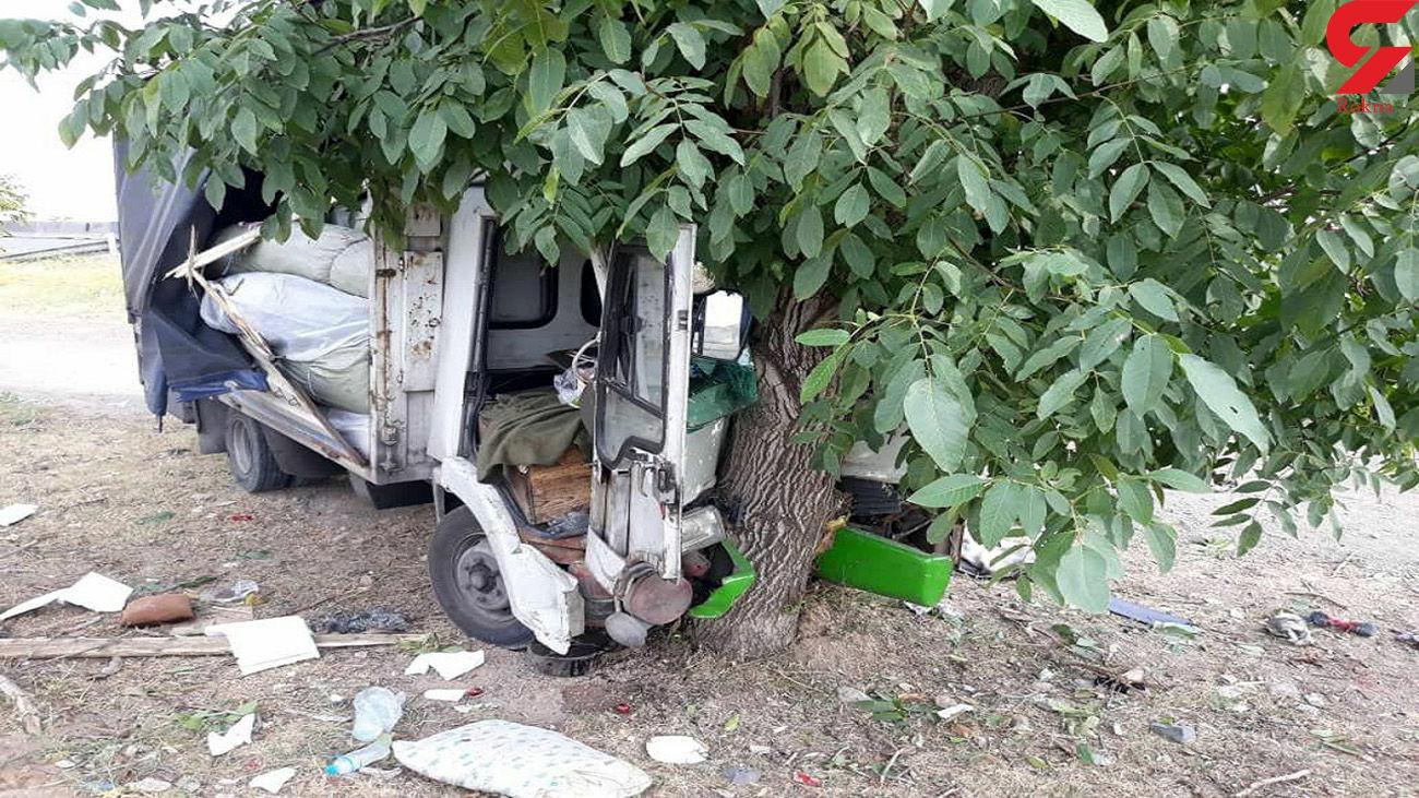 برخورد کامیون با درخت در قزوین یک مصدوم برجای گذاشت