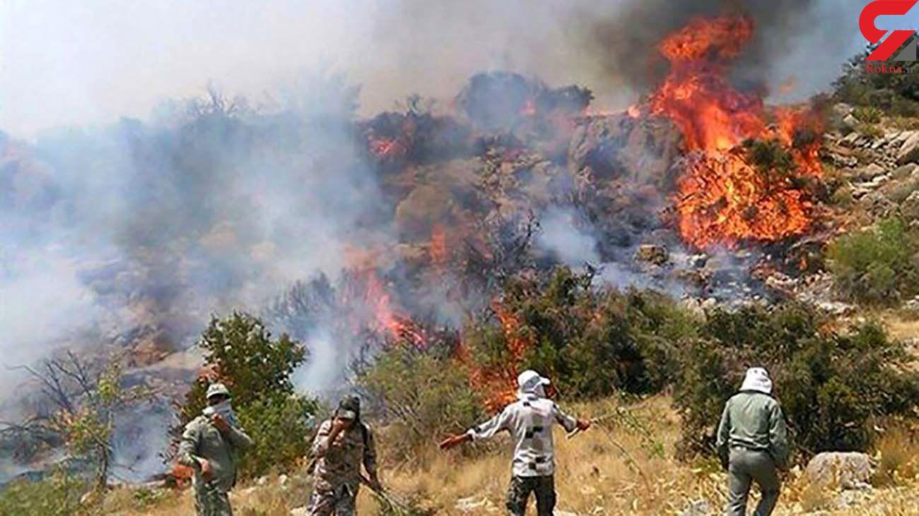 آتش سوزی جنگل های کوه نیر کهگیلویه مهار شد
