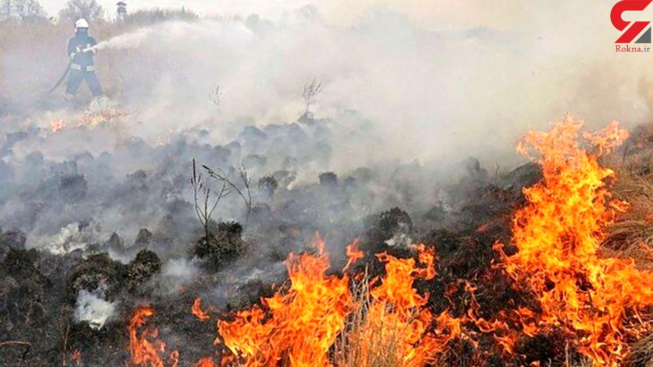 ۱۴۰ هکتار از مراتع ساوه در آتش سوخت