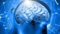 مغز در احیای خاطرات قدیمی برعکس رفتار می کند