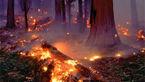 اعزام بالگرد برای مهار آتش جنگل های اندیمشک