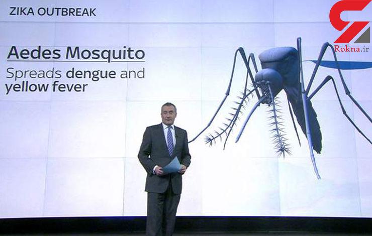 هشدار شیوع ویروس خطرناک زیکا در امریکا