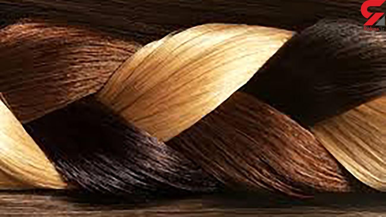 با این 6 خوراکی موهای سالمی خواهید داشت