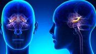 زنگ خطر ابتلا به بیماری آلزایمر با این نشانه ها