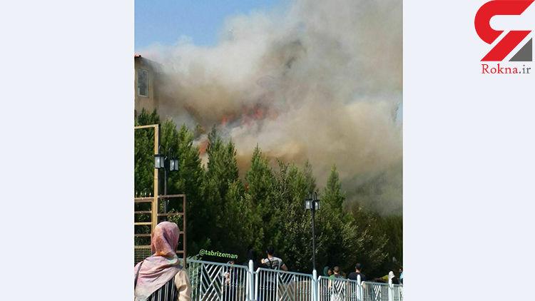 آتش سوزی در پارک ساحلی سد امند