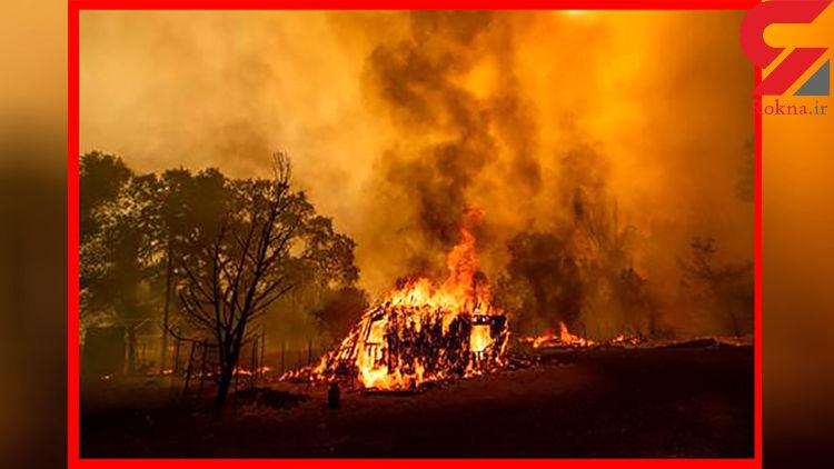 آتش سوزی مهیب در جنگلهای کالیفرنیا و آریزونا