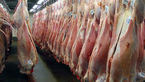اجاره کارت ملی برای خرید گوشت قرمز یخی در تهران !