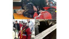 تصویر زنده بودن مرد سقوط کرده از ارتفاع 20 متری / در رودهن رخ داد+ عکس