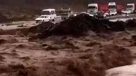 فیلم تلخ از هجوم سیل ویرانگر به کرمان / جاده ها بسته شد