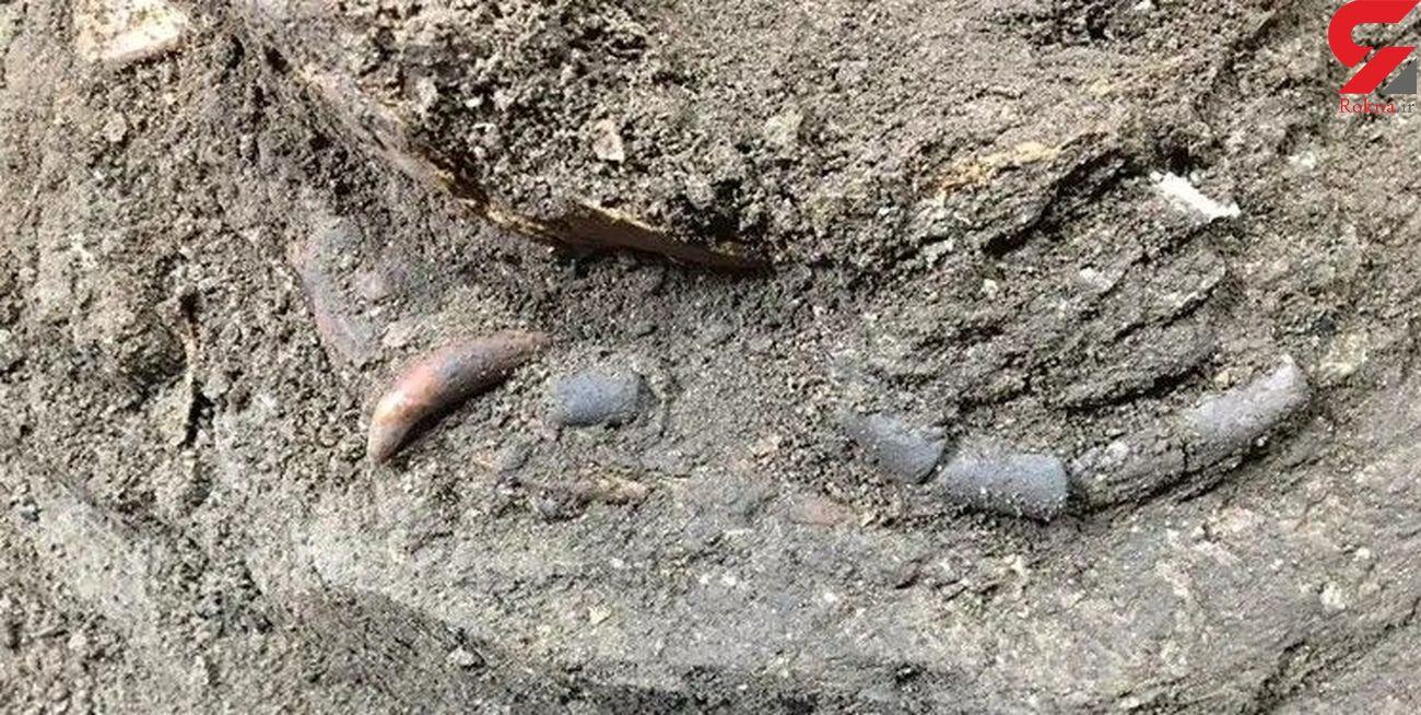 کشف نخستین «رد پای مهر مادری» در غار هوتو
