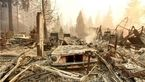 مفقود شدن بیش از 600 نفر در آتشسوزی مرگبار کالیفرنیا