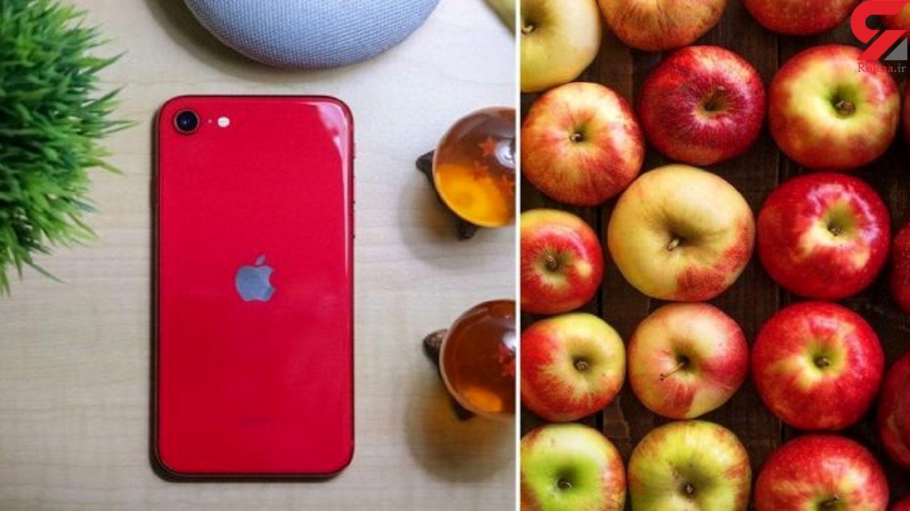 تحویل آیفون اپل به جای سیب + عکس