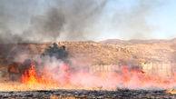 500 هکتار از عرصه های جنگلی طعمه حریق شد