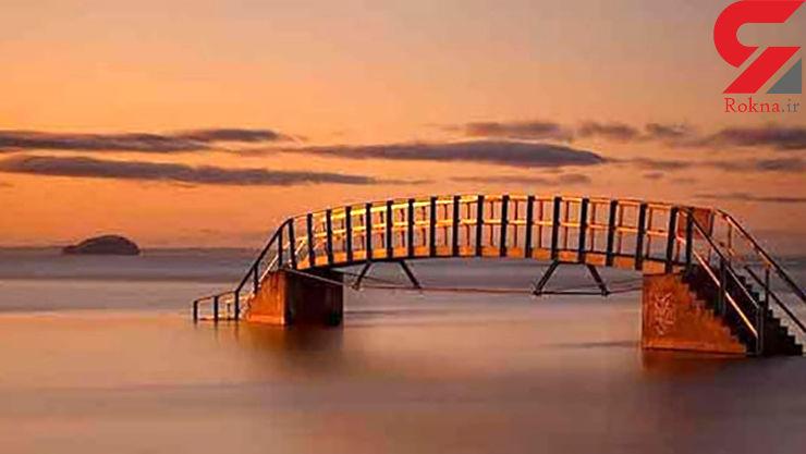 این پل زیبا هیچ کارایی ای ندارد!+عکس