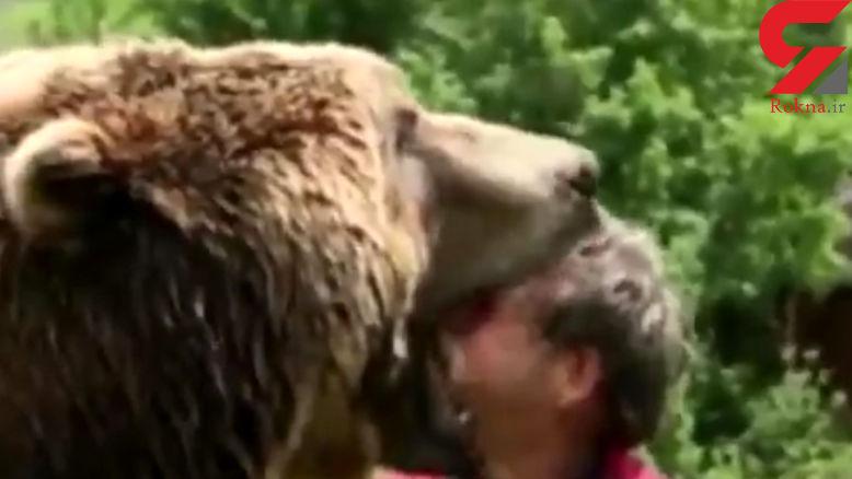 رفاقت ترسناک یک مرد با خرس غول پیکر + فیلم