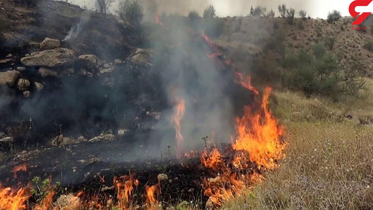 ارتفاعات سبزپوشان شیراز همچنان طعمه آتش