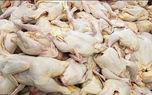 گران فروشان قیمت مرغ را از تابلوها حذف می کنند
